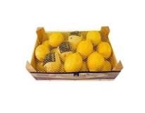 Horeca Select Citróny Primofiori čerst. 4/5 I. 1x2,3 kg