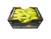 Paprika biela corno 35+ I. čerstvá 1x5 kg kartón