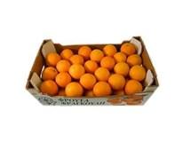 Pomaranče Lane Late 4/5 I. čerstvé 1x9 kg