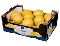 Horeca Select Citróny Primofiori 4/5 I. čerstvé 1x2,3 kg