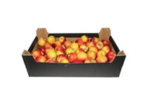 Jablká Gala 70+ I. čerstvé 1x6 kg kartón