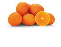 Pomaranče Navelina 1/2 I. čerstvé 1x10 kg skladané