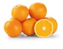 Pomaranče Navelina Bollo 2/4 I. čerstvé 1x4 kg