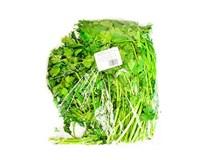 Petržlen hladkolistý čerstvý 1x400 g fólia