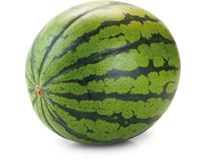 Melón vodový semenný čerstvý váž. cca 4-11 kg/ks