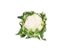 Karfiol biely čerstvý 1x6 ks