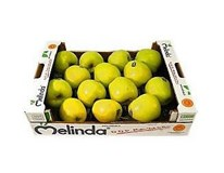 Jablká Golden Delicious 65/75 čerstvé váž. cca 1kg