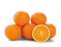 Pomaranče Navelina 4/5 I. čerstvé 1x9 kg kartón