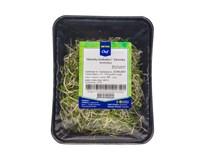 Výhonky brokolice čerst. 1x50 g vanička