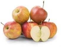 Jablká Jonagored 65+ I. čerstvé 1x13 kg