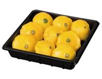 Patizón baby žltý čerstvý 1x200 g vanička