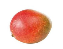 Mango Kent by Air 500g+ čerstvé 1x1 ks