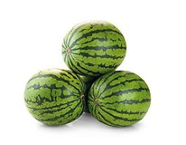 Melón vodový semenný čerstvý váž. cca 3-9 kg/ks