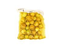 Cibuľa žltá 40+ čerstvá 1x1,5 kg sieť