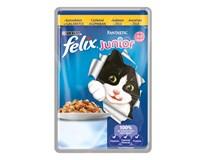 Felix Fantastic Junior Kura krmivo pre mačky 20x100 g
