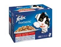 Felix Fantastic Mix mäso krmivo pre mačky 12x100 g