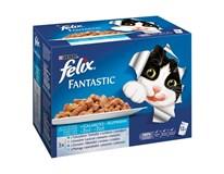 Felix Fantastic Mix ryba krmivo pre mačky 12x100 g