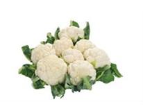 Karfiol biely čerstvý 1x8 ks