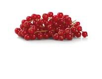 Ríbezle červené SK čerstvé 1x125 g vanička