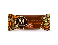 Magnum Collection Salted Caramel nanuk mraz. 20x88 ml