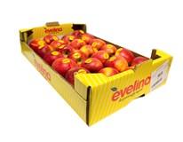 Jablká Evelina 75+ I. AT čerstvé 1x4 kg