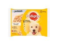 Pedigree Vital junior kapsičky pre psov 4x100 g
