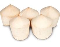 Kokosový orech mladý biely 900g+ TH čertsvý 1x1 ks