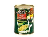 Exotic fruit bambusové výhonky nudličky 1x565 g