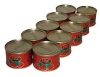 Pat paradajkové pyré 14-24% 10x70 g