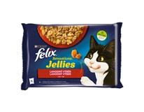 Felix Sensations kuracie a hovädzie krmivo pre mačky 4x85 g