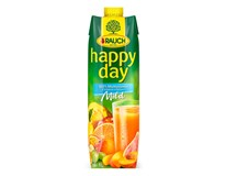 Rauch Happy Day Mild nektár multivitamín 12x1 l