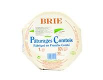 Brie Paturages syr s bielou plesňou na povrchu chlad. 1x1 kg