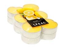 Citronela čajová maxi žltá Spaas 12ks
