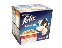 Felix Agail krmivo pre mačky 24x100 g