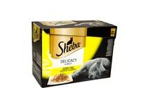 Sheba kapsičky Delicacy in Jelly hydinový výber pre mačky 12x85 g