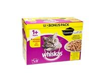 Whiskas casserole hydinový výber pre mačky 12x85 g