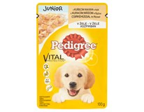 Pedigree Junior kura a ryža 24x100 g