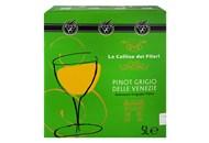 Вино Le Colline dei Filari Pinot Grigio delle Venezie 12% 5л