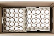 Яйця курячі харчові столові сорт вищий 200шт